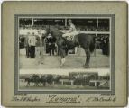 Zenana, Bowie Race Track, November 20, 1941