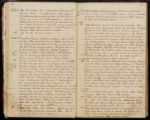 Emily Ann Powell Warrington's annotated diary 1846-1862 pages 040 and 041