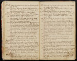 Emily Ann Powell Warrington's annotated diary 1846-1862 pages 038 and 039