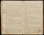 Emily Ann Powell Warrington's annotated diary 1846-1862 pages 042 and 043